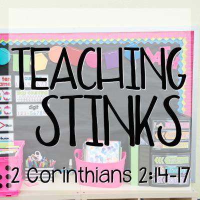 Teaching Stinks
